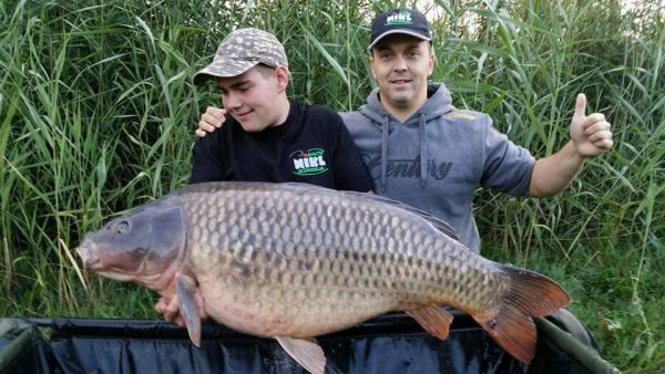 Zanu and Chippy (Slovenia) - 59,5 lb / 27 kg
